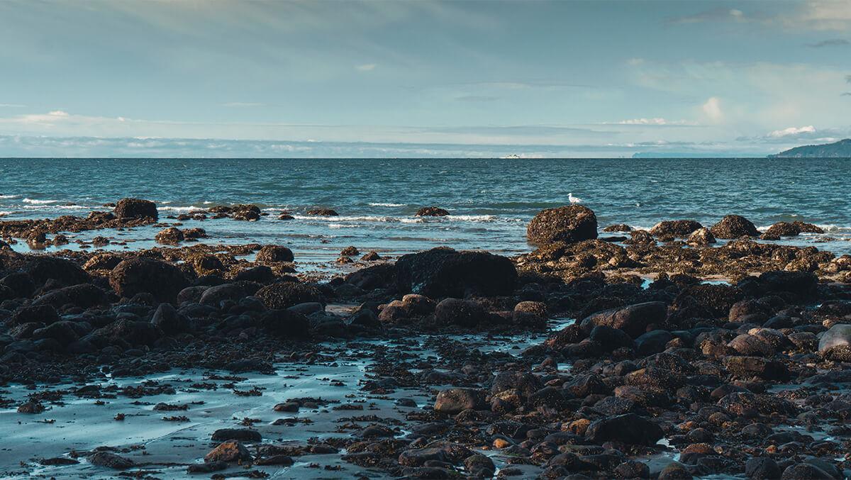 Steinstrand Pazifik mit Bergen am Horizont