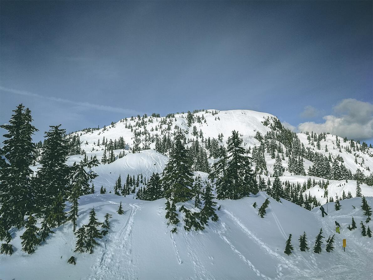 schneebedeckter Berg und Bäume