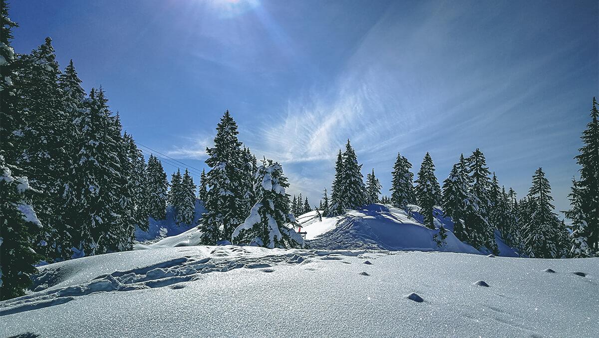 Schneelandschaft Mount Seymour