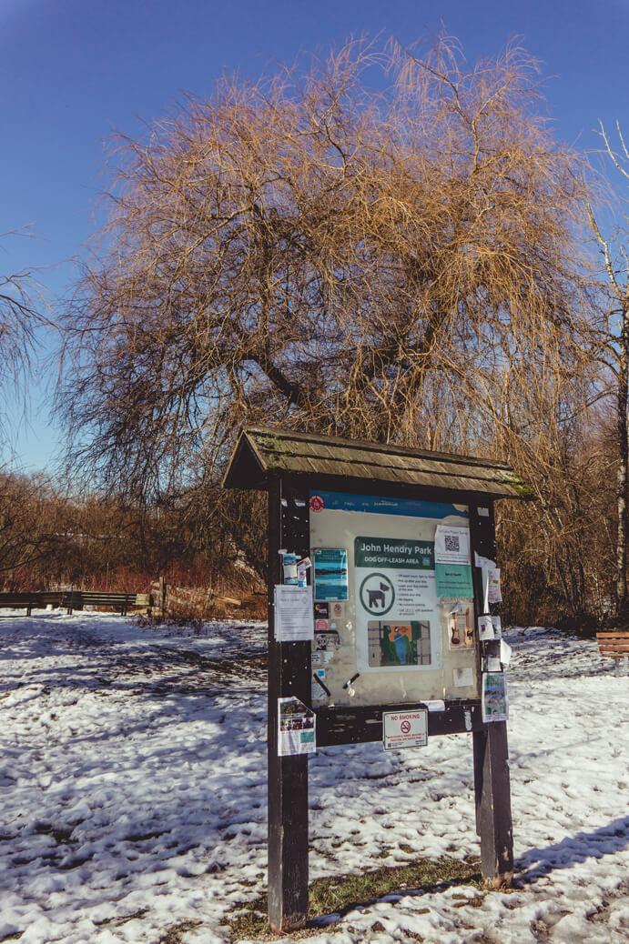 John Hendry Park - Parktafel mit Baum im Hintergrund