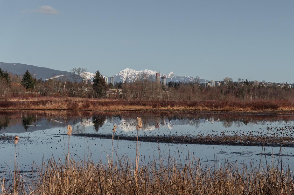 Burnaby Lake mit Bergen im Hintergrund
