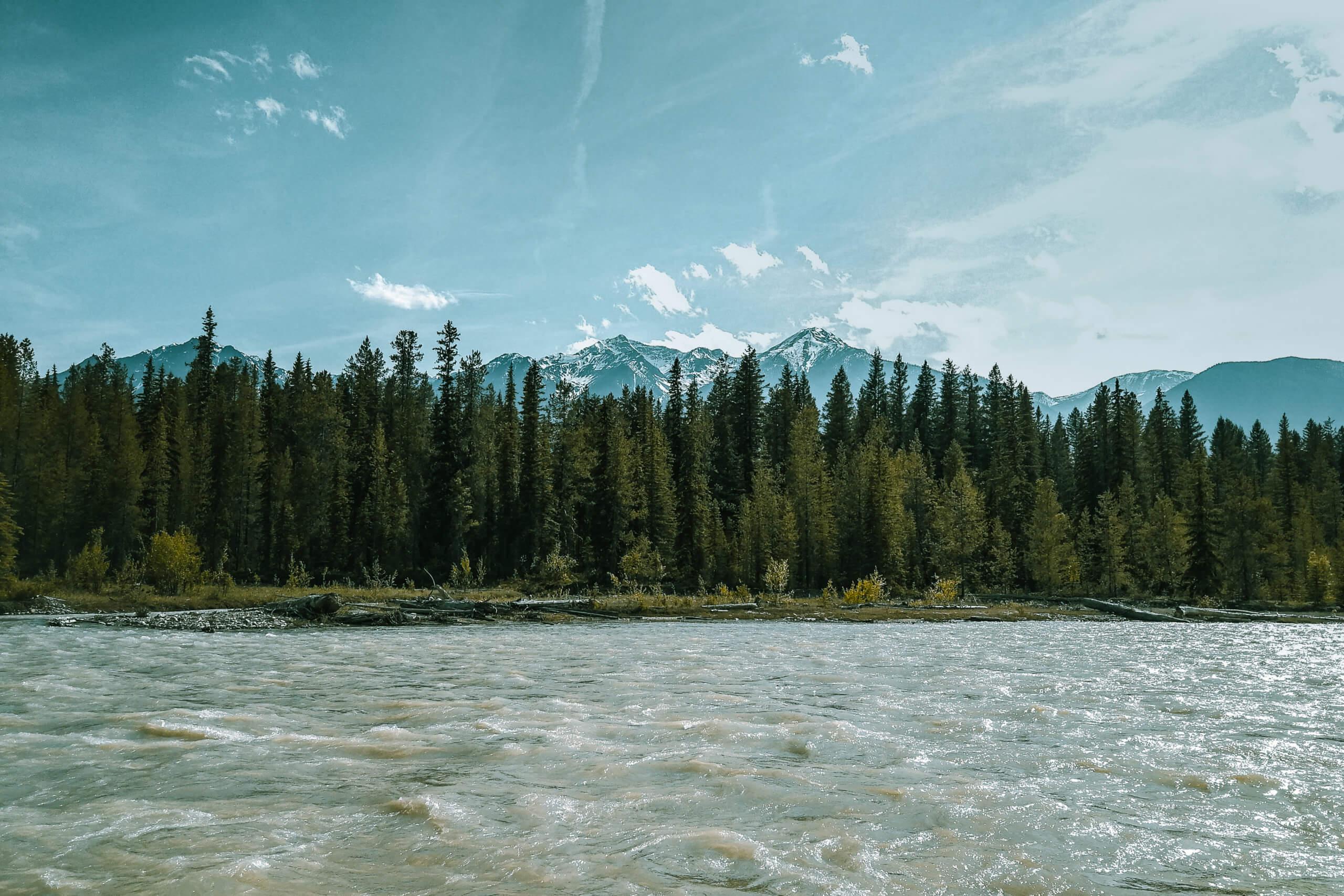 Blick auf den Columbia River am Campground