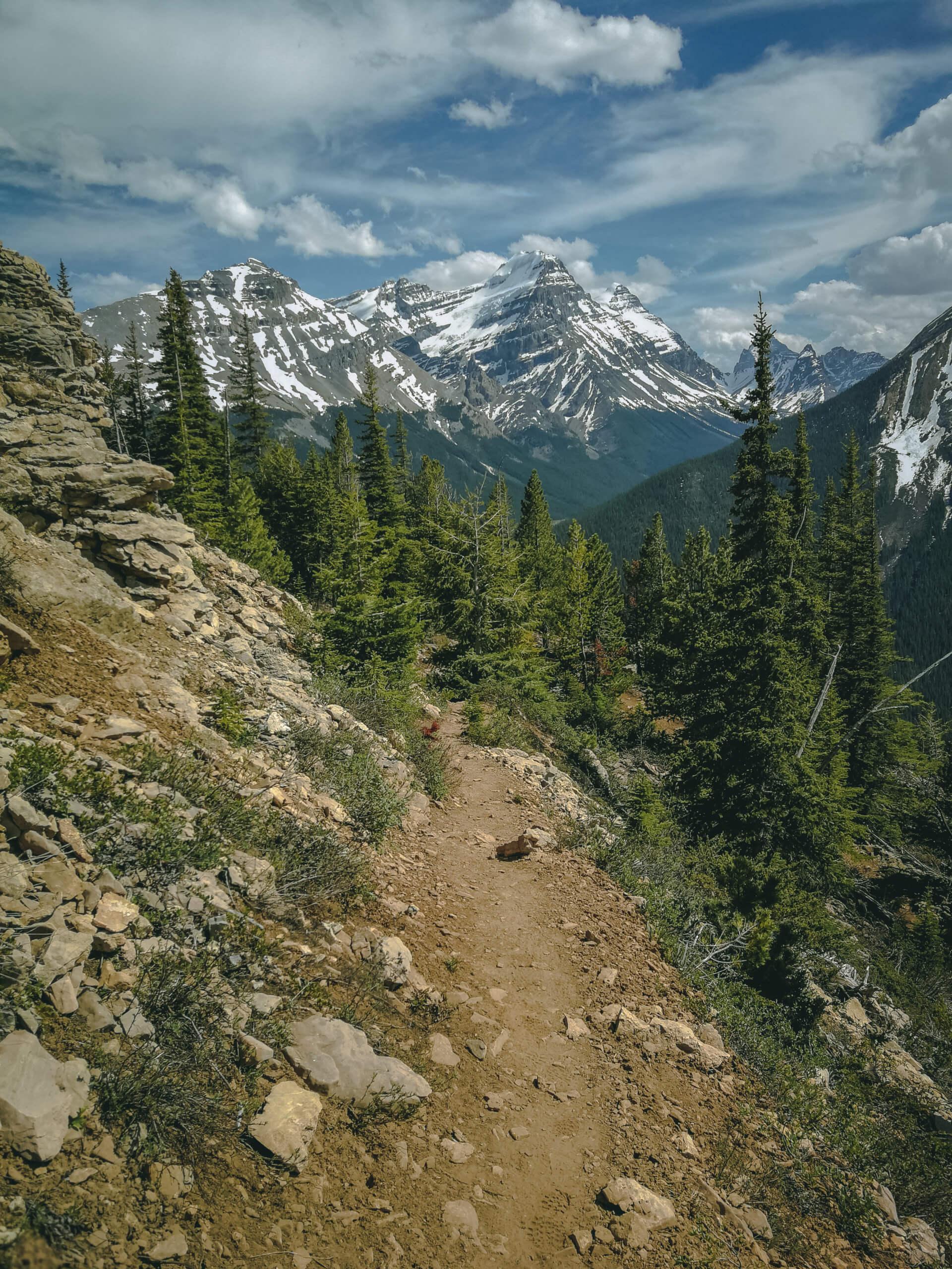Paget Lookout Trail auf dem Weg nach oben