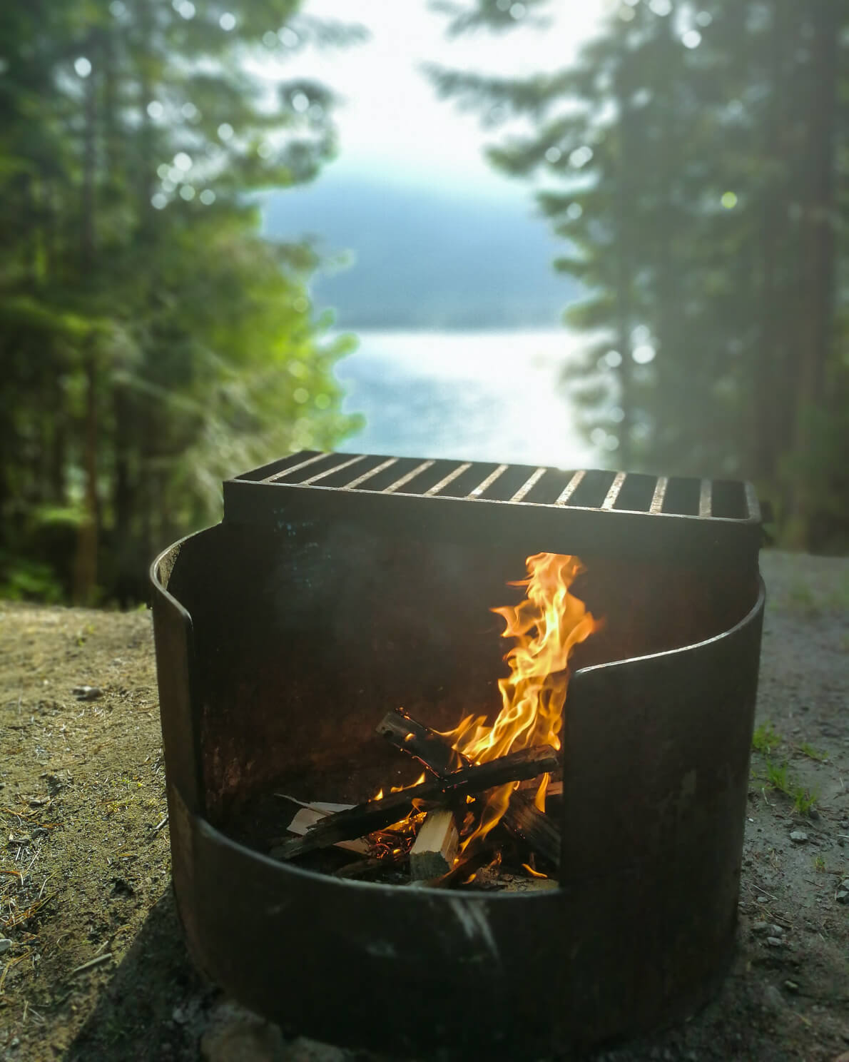 Barbecue am Arrow Lake