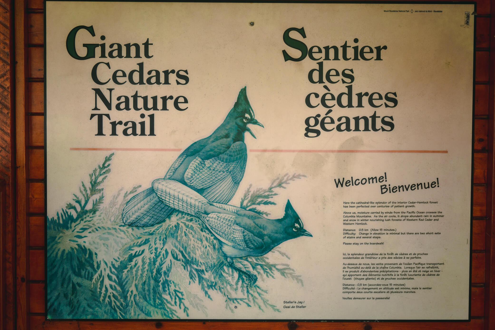 Schild Giant Cedar Nature Trail